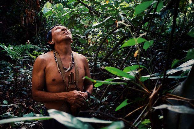 Amazonul arde