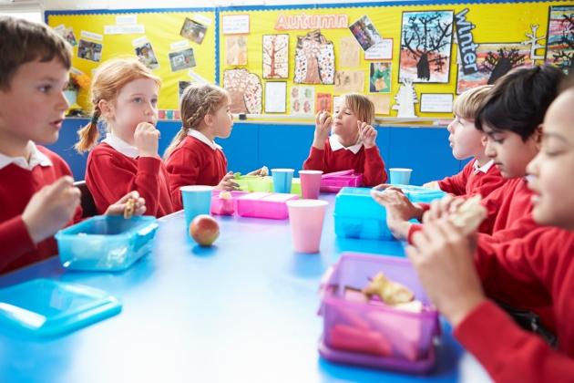 legea alimentatiei in scoli si gradinite