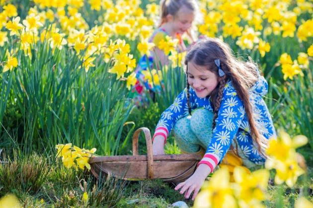 lucruri fascinante despre copiii nascuti in aprilie