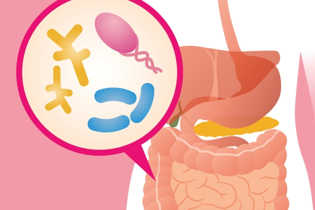probioticele la copii