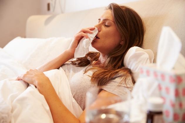 virusul gripal de tip B