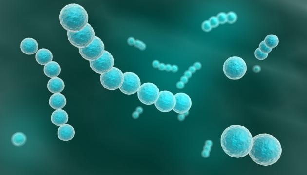 complicatiile streptococului
