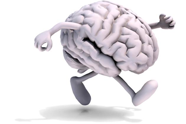 exercitiu fizic si functionarea creierului