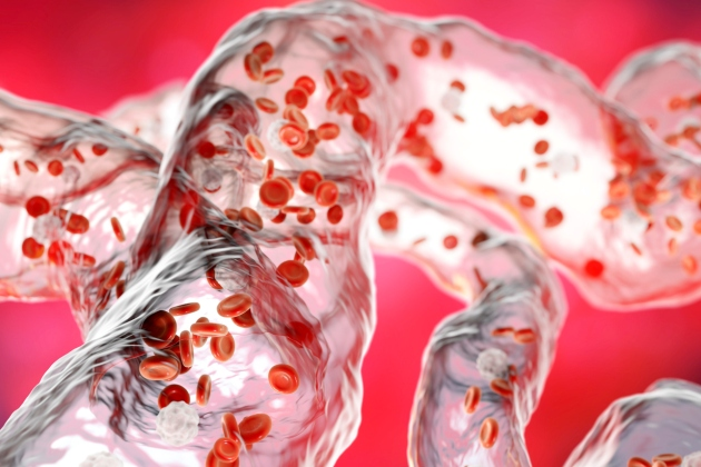 trombocite crescute la copil