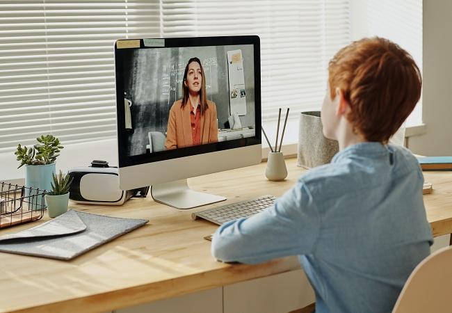 Baietel ce invata acasa in sistem online