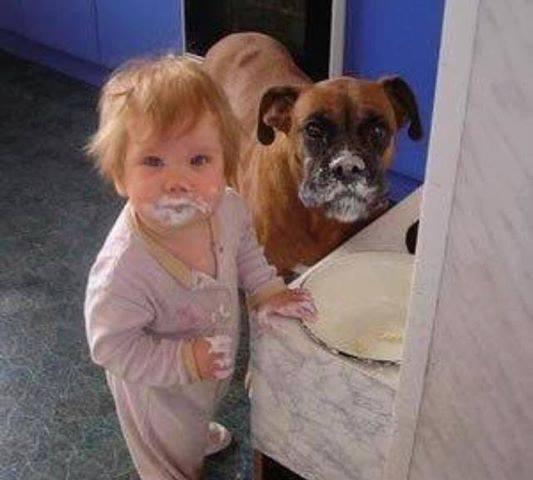copil si caine murdari la gura