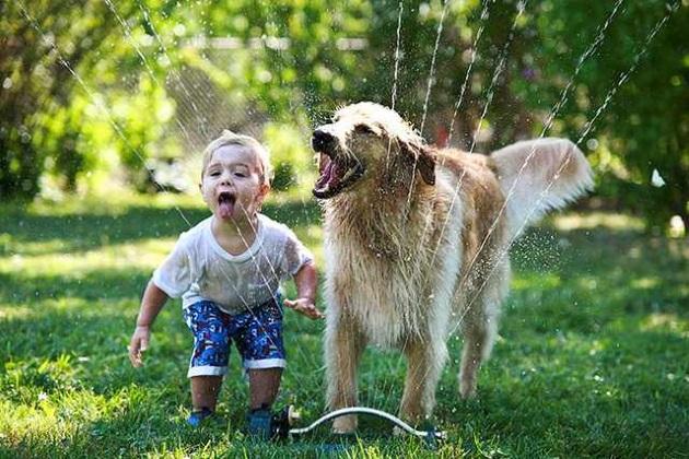 copil si caine care se joaca cu apa