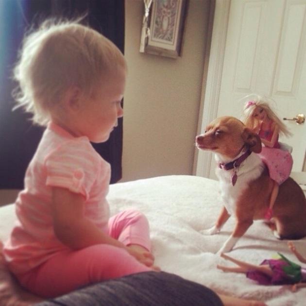 copil care se uita la caine