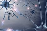 Conexiunile creierului unui copil