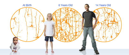 Activitatea creierului in functie de varsta copilului