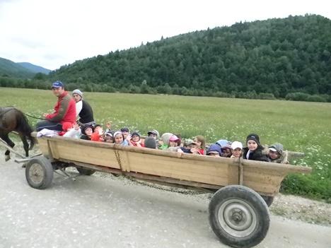 copii in caruta