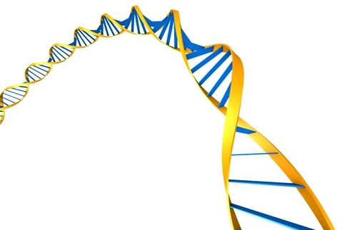 recoltare de celule stem