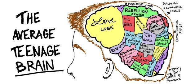 Creierul adolescentilor